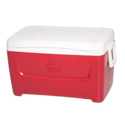Small Ice Chest Rental