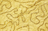 72X72 18K Gold Bedazzle Topper Rental